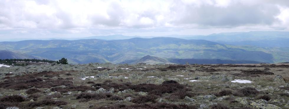 Les Cévennes vues depuis le sommet du Finiels (Mont Lozère)
