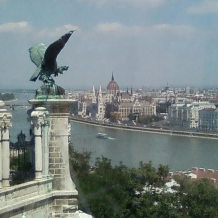 Le Turul, oiseau sacré des Magyars