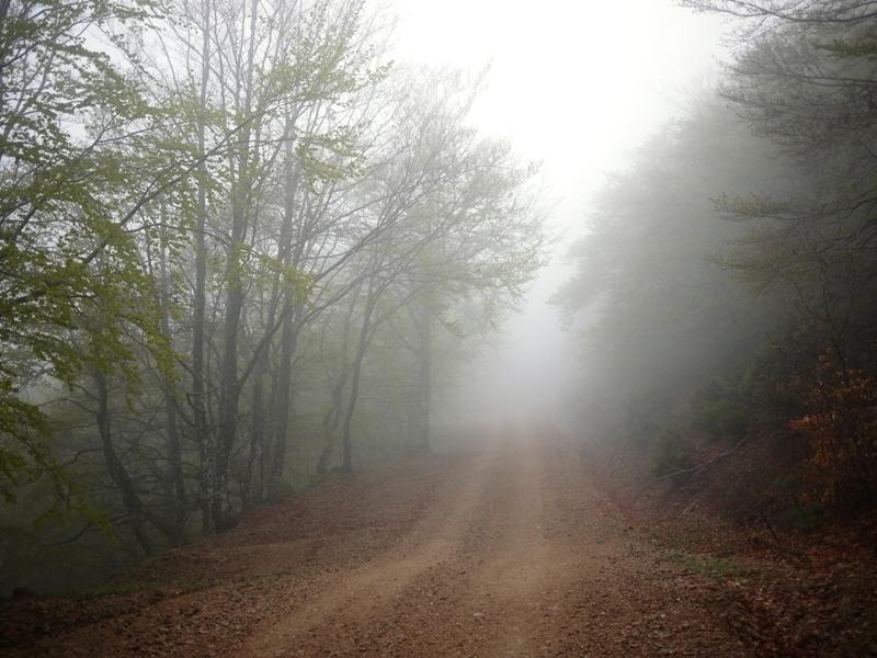 Matin brumeux sur la Mourade