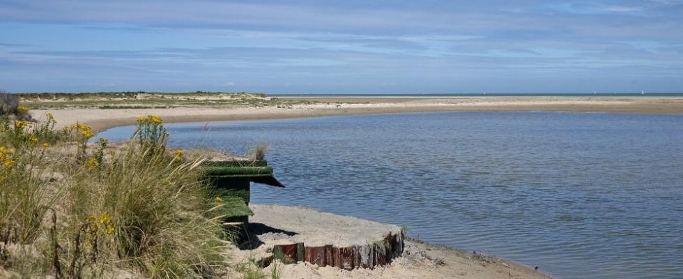 Hutte de chasse au bord d'une flaque — Côte d'Opale, entre Gravelines et Calais