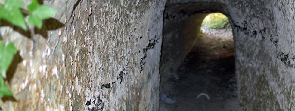 Fragile lumière au bout du tunnel