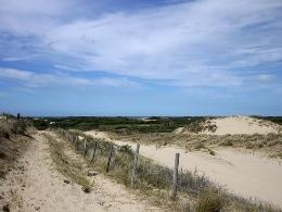 16 juillet 2010 – Bray-Dunes